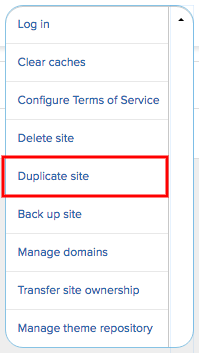 From the submenu, select the Duplicate site option.