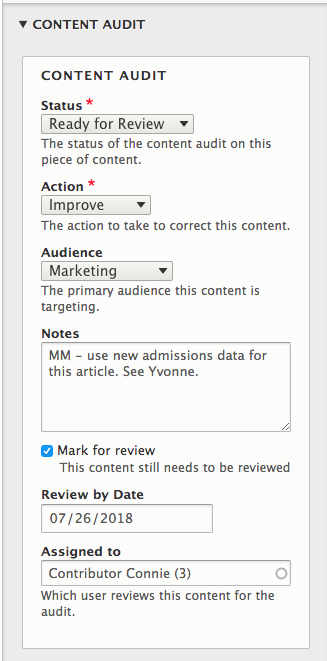 Example of the content audit panel completed for review