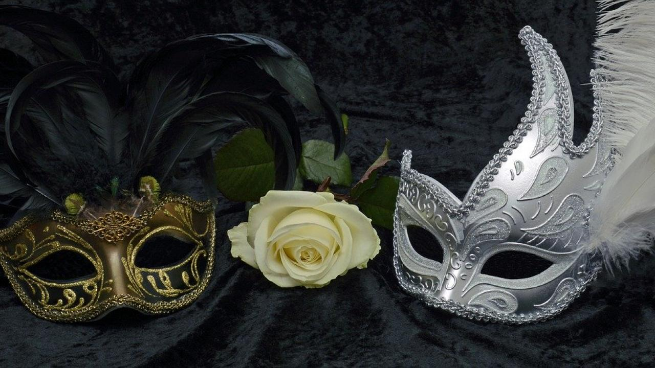 Two elaborate feathered carnival masks sit on black velvet, a white rose between them. Image by annca from Pixabay